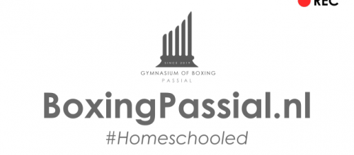 Boksen vanuit je woonkamer (klik voor de online lessen)! #homeworkout